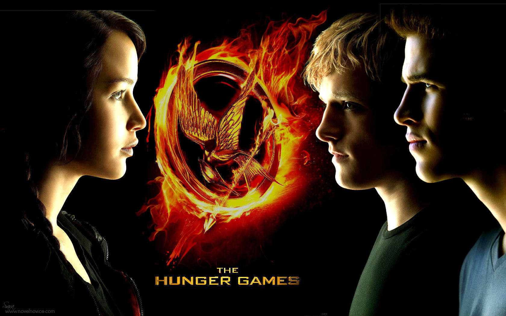 hunger games essay contest
